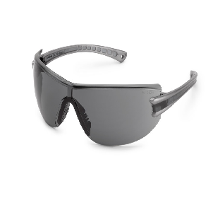 19GY83 Luminary Silver Temples/Grey Lense Safety Glasses