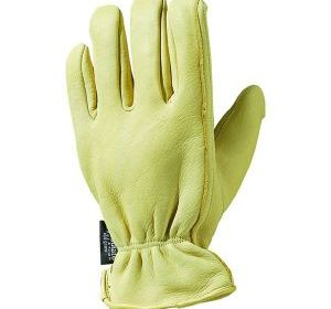 T5505 Thinsulate Grain Deerskin Glove